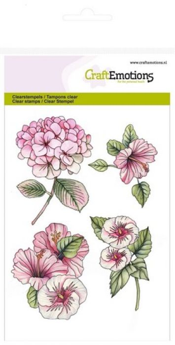 clearstamps A6 - Hortensia Hibiscus