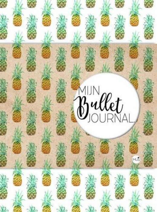 BBNC - Mijn bullet journal - ananas -tnl